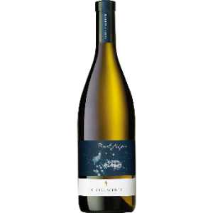 Lageder Pinot Grigio - Alto Adige DOC tr. 2019, Alois Lageder